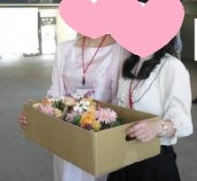桜色のドレスで記念撮影